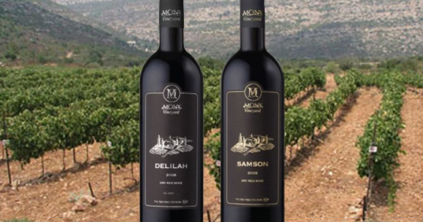 Бутылки с вином на фоне виноградника