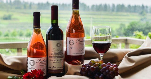 три бутылки вина и бокал на фоне природы