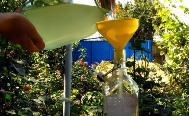 разлив домашнего алкоголя в бутылки