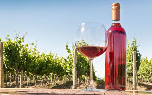 бутылка и бокал вина на фоне виноградника