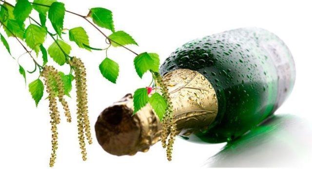 Бутылка шампанского и веточка березы