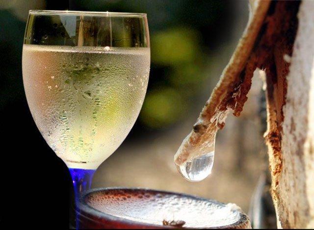 бокал с соком березы